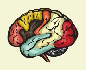 brain_numbers