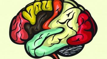 brain_numbers_FI