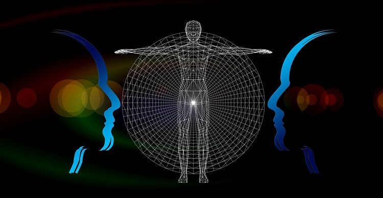 TPN vs. DMN – Brain Structure and Mindfulness